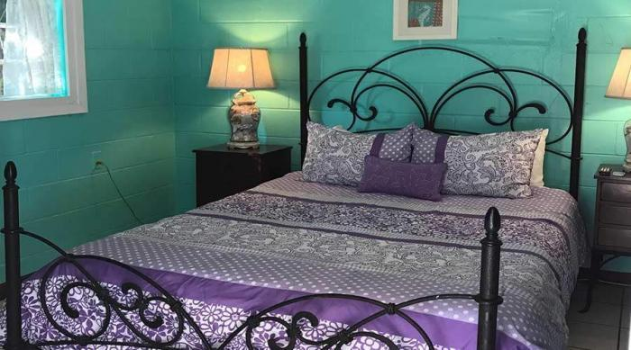 Captiva Island Cottage - Daisy Cottage - 1 Bedroom Queen Bed
